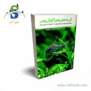 catfish book