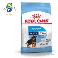 غذای خشک توله سگ نژاد بزرگ (۱۰ کیلوگرم) رویال کنین (Royal Canin Maxi Puppy 10kg) 1
