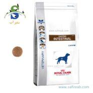 غذای خشک سگ مبتلا به بیماریهای گوارشی (۲ کیلوگرم) رویال کنین (Royal Canin VD GASTRO INTESTINAL 2kg)