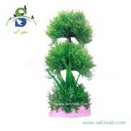 plant 78525