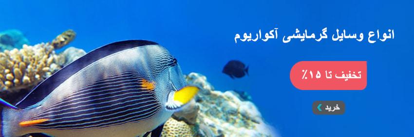 fish bokhari-min