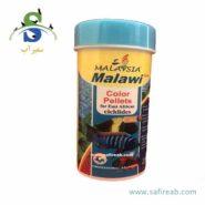 malaysia cichilde color Malawi-min