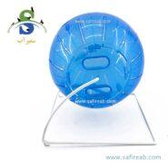 اسباب بازی توپ پایه دار ۴ کاره مخصوص همستر و موش (در سه رنگ) کارنو (Carno Hamster Fitness Ball) 2