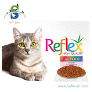غذای خشک گربه بالغ حاوی گوشت مرغ (۱ کیلویی باز و فله) رفلکس(Reflex Cat Dry Food Chicken 1 kg)