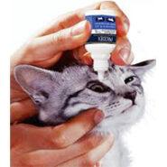 بهداشت گوش و چشم گربه