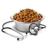 غذای نرم و درمانی