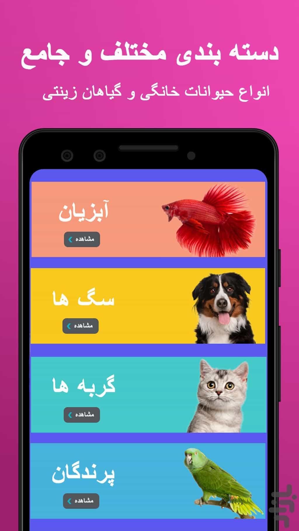 app.safireab.com-124012127677-min