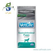 Farmina Vet Life Canine Formula Gastrointestinal Puppy